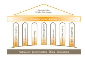 7-Säulen-Erfolgsprogramm